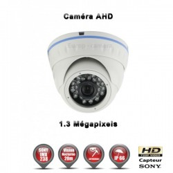 Ver maior Câmera dome AHD 960P 1.3MP Sensor 1/3 SONY IMX238 IR 20m à prova de água e de vandalismo